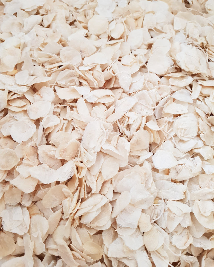 DRIED IVORY PETAL  -PP