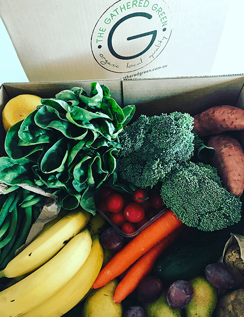 Organic Seasonal Box Medium – Weekly
