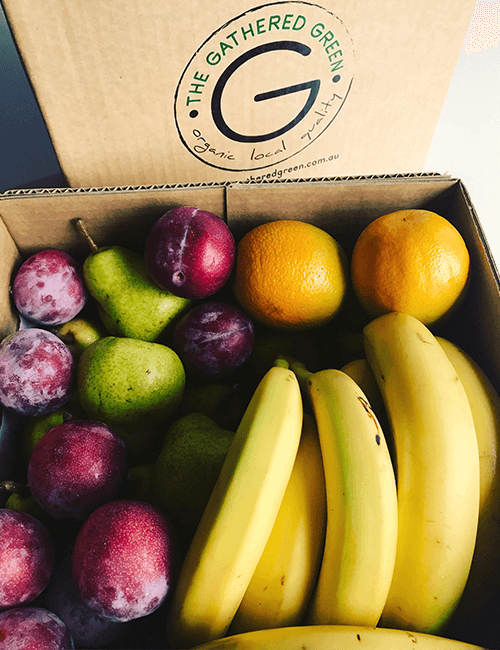 Organic Fruit Box – Weekly