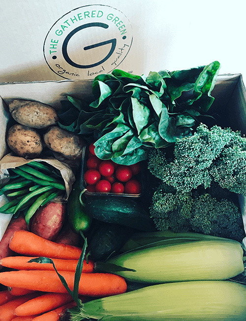 Organic Veggie Box – Weekly