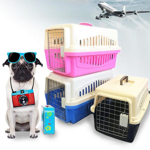 Caisse de transport chien avion transport chimeysparadise
