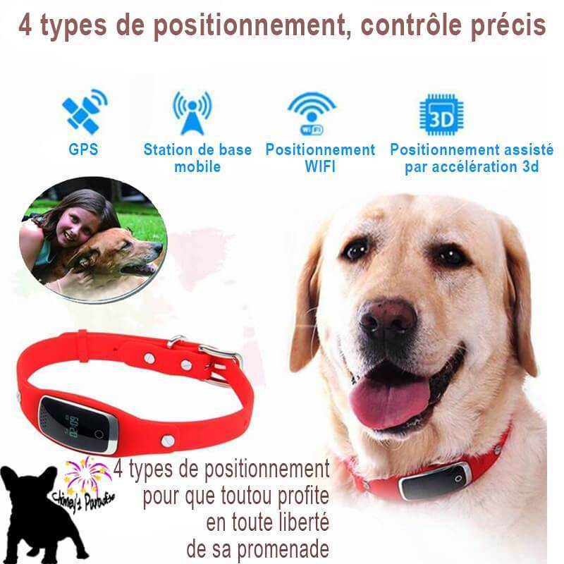 Mini Collier Traceur GPS Waterproof silicone pour animaux de compagnie gps Chimey's Paradise