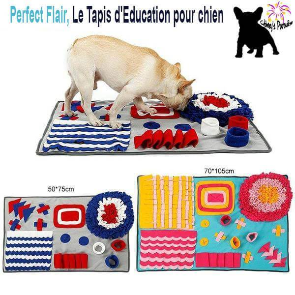 Perfect Tapis FlairLe D'education Pour Chien qSVMUzp