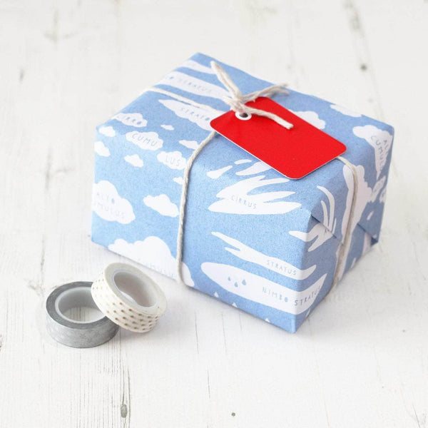 Cloud Types Educational Gift Wrap Set - Newton and Apple