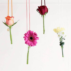 Hanging Glass Test Tube Vase - Newton and Apple