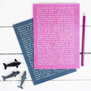 Educational Collective Animal Nouns Notebook Set - Newton and Apple