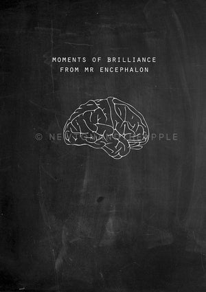 Chalkboard Brain Notebook For Neuroscience Geeks - Newton and Apple