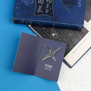 Cygnus Swans Star Constellations Enamel Pin Set - Newton and Apple