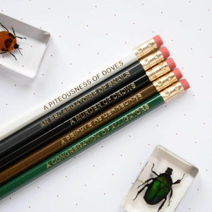 Dark Animal Nouns Pencil Set - Newton and Apple