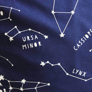 Night Sky Constellations Cushion - Newton and Apple