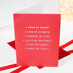 Christmas Collective Nouns Card Packs - Newton and Apple