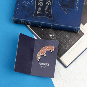 Vulpecula Fox Star Constellation Enamel Pin - Newton and Apple