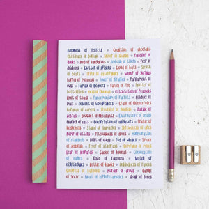Collective Animal Nouns Rainbow Notebook - Newton and Apple