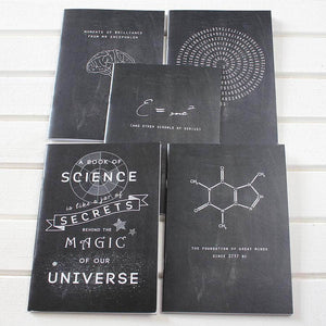 Einstein Science Equation Chalkboard Notebook - Newton and Apple