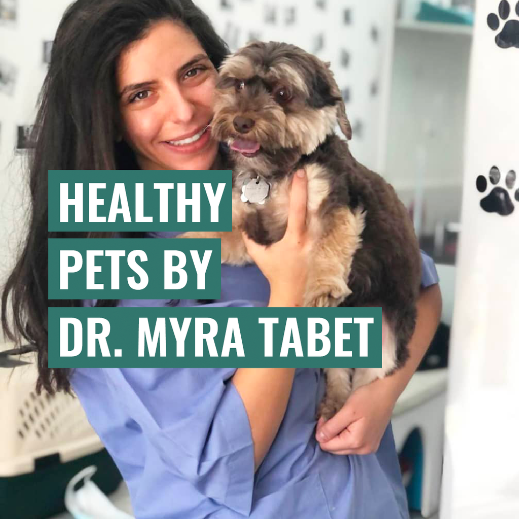Healthy Pets by Dr. Maya Tabet