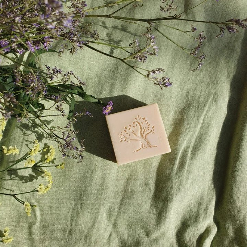 Why Use Olive Oil Soap? Here Are the Top 5 Benefits