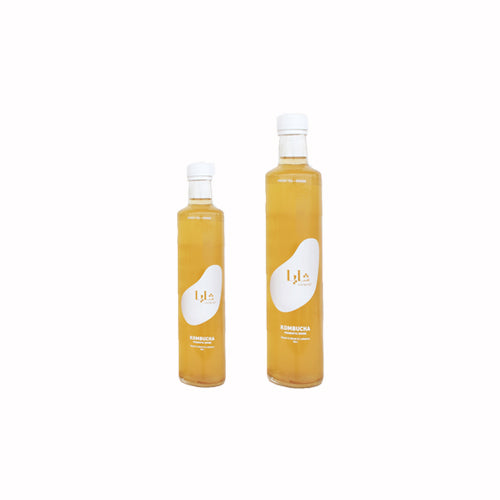 Shaya Kombucha Green Tea & Ginger