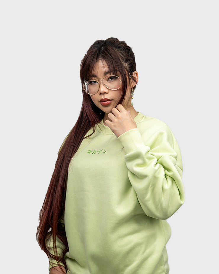 IRO Sweater /// Pastel Green