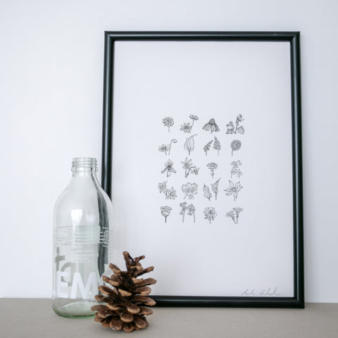 Botanical floral illustration line drawing print, tiny flowers A4 in size