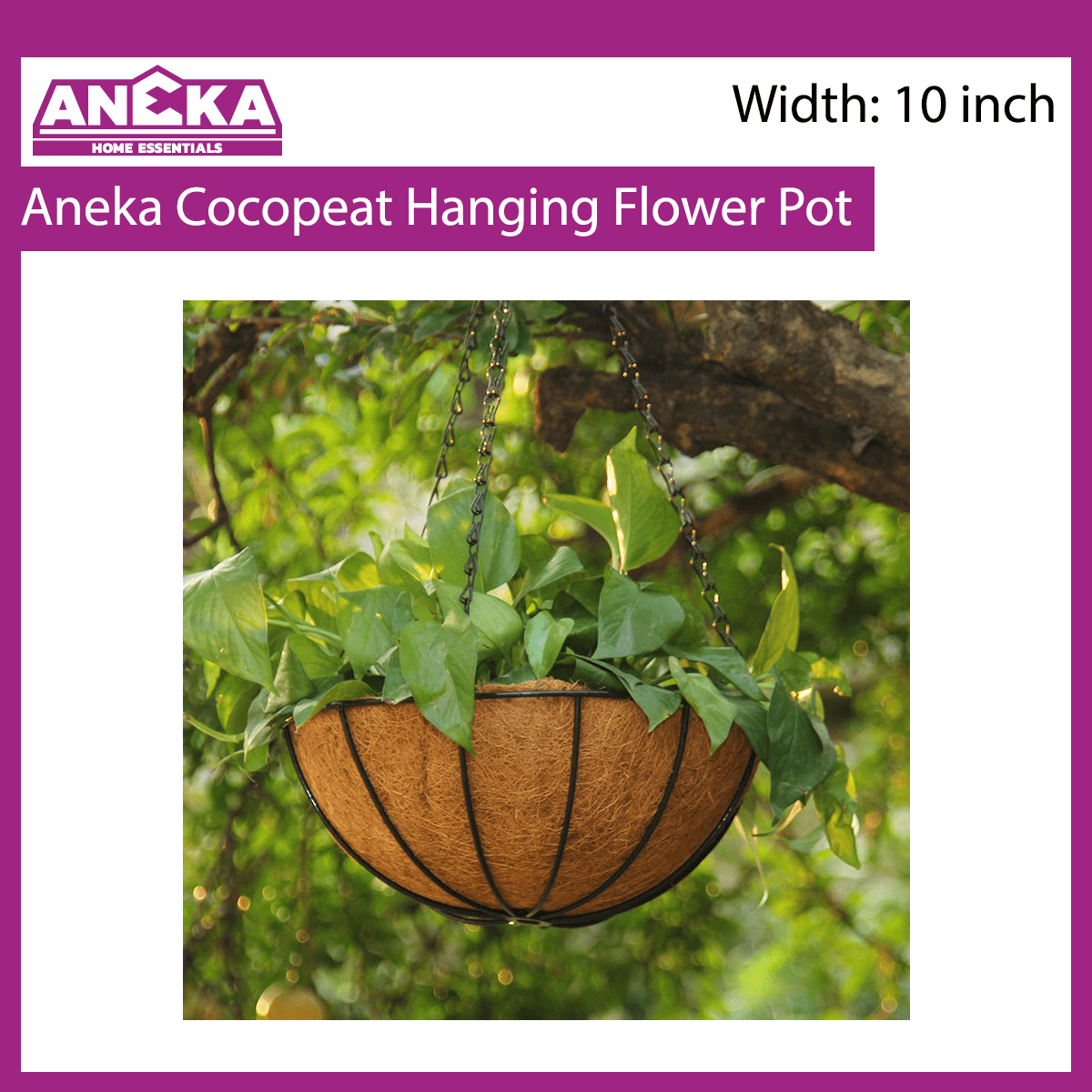 Aneka Cocopeat Hanging Flower Pot (10in)