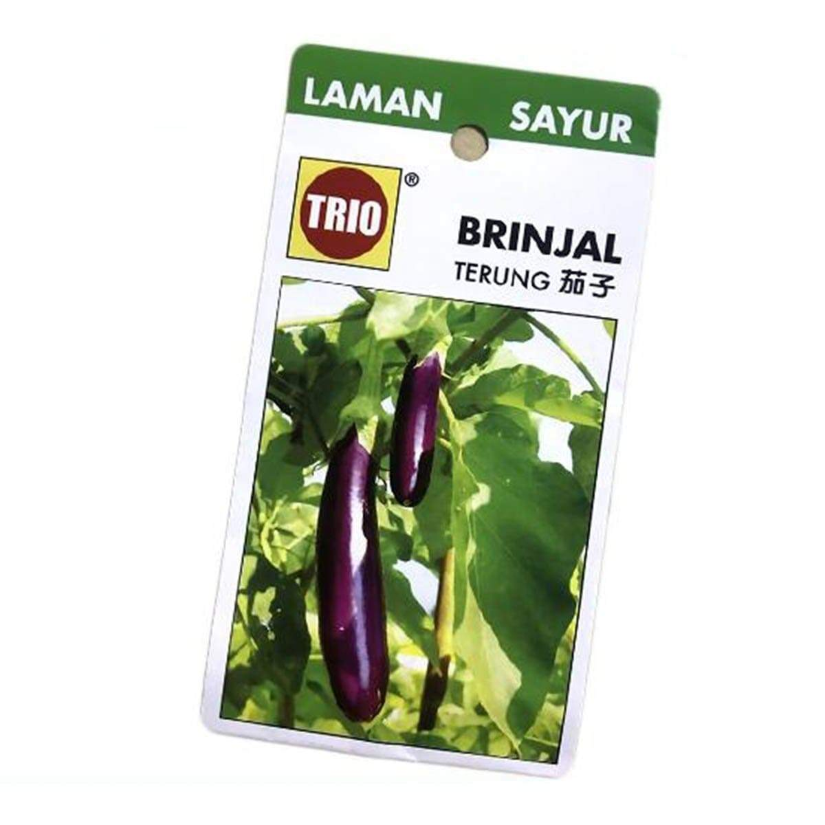 Trio Brinjal Eggplant Vegetable Seeds