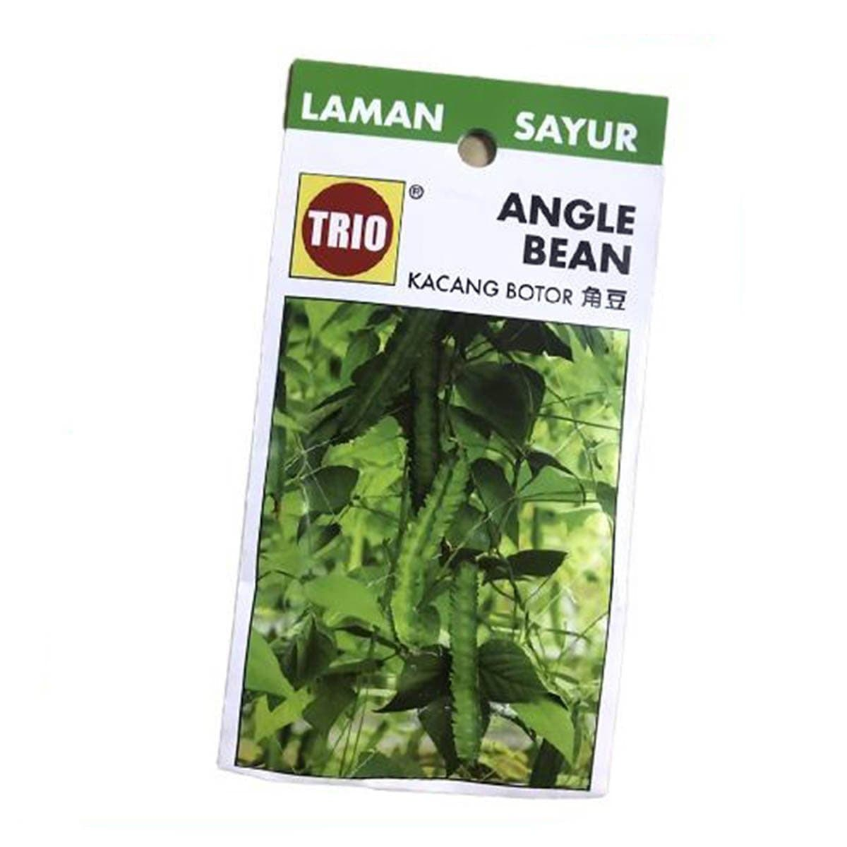 Trio Four Angled Bean Vegetable Seeds