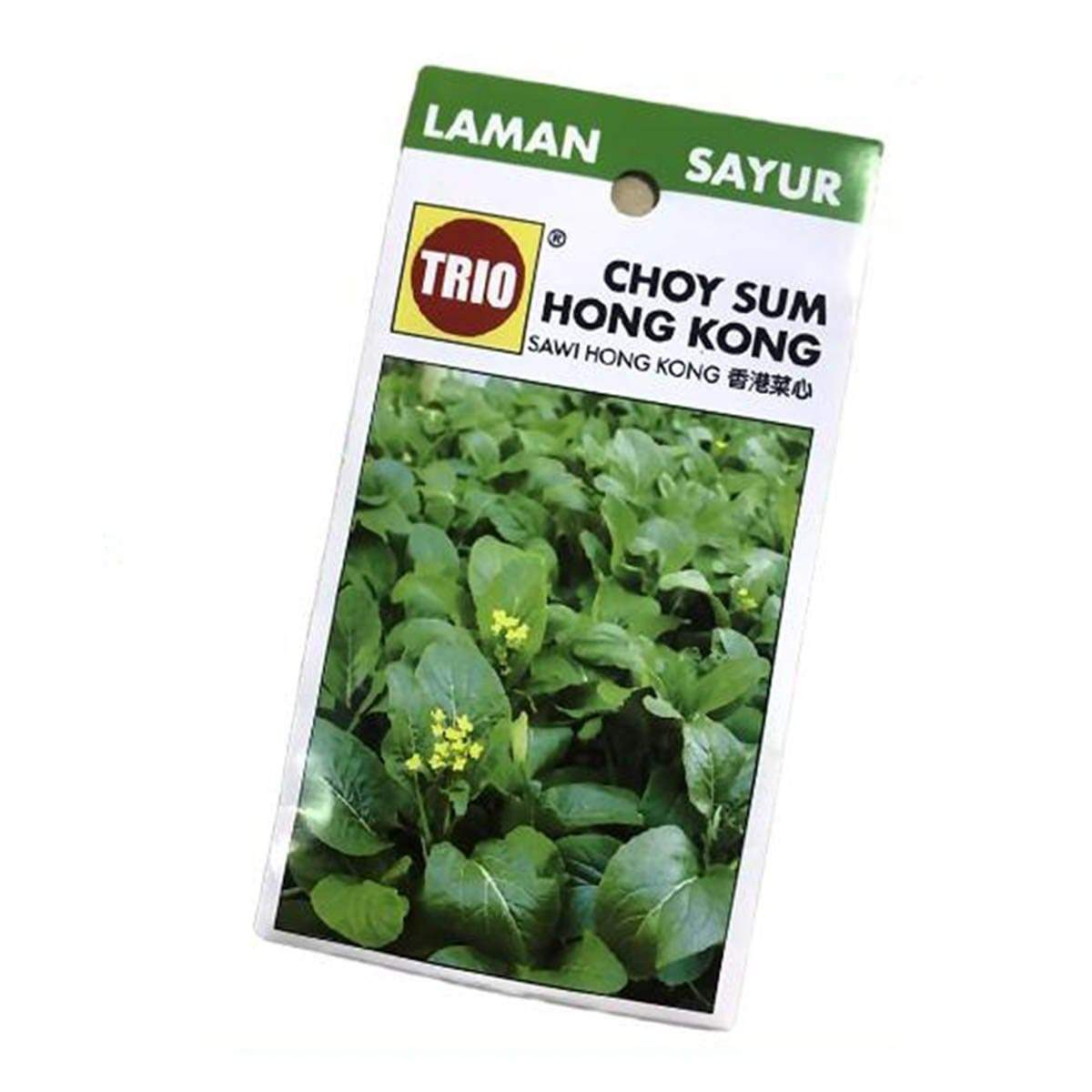 Trio Hong Kong Choy Sum Vegetable Seeds