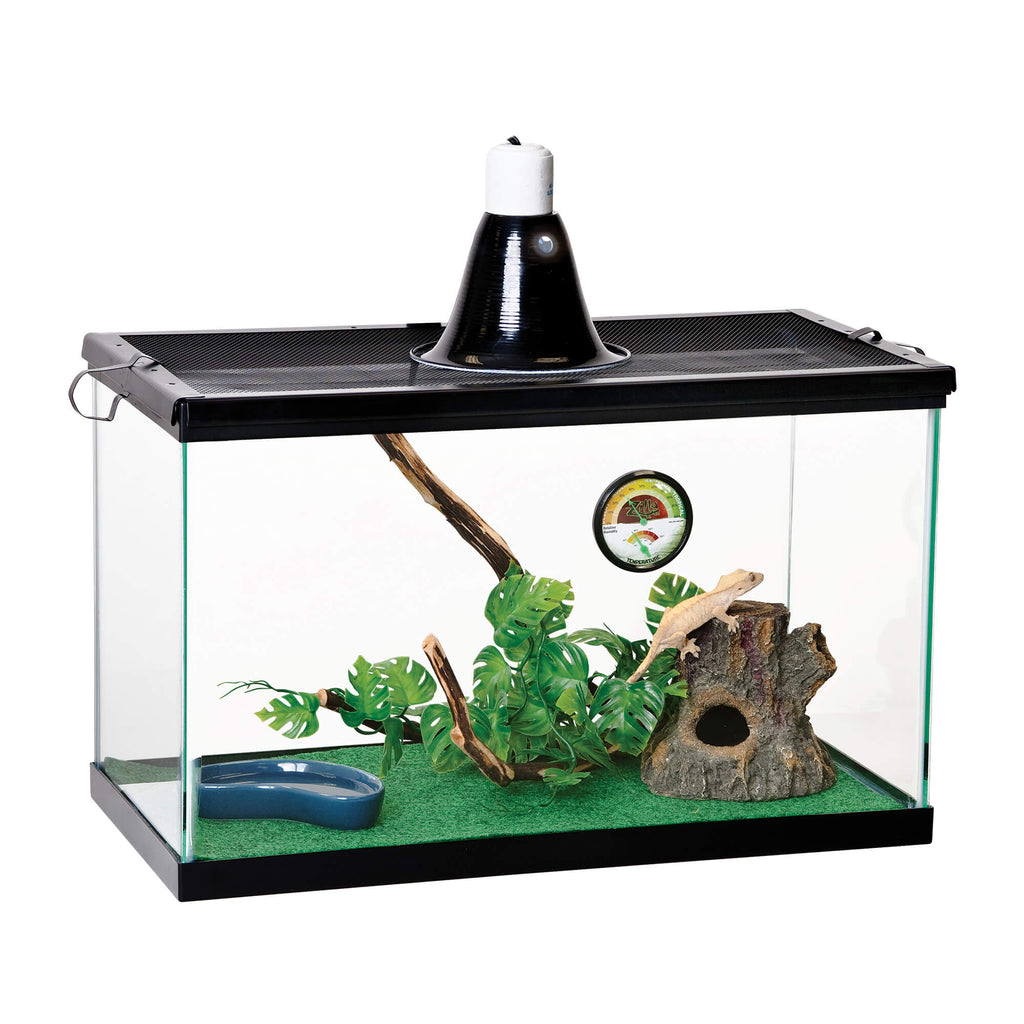 "Zilla Basic Tropical Reptile Starter Kit Size 10 20.25"" x 10.5"" x 12.56"" - ViTaiLity Pet Supply"