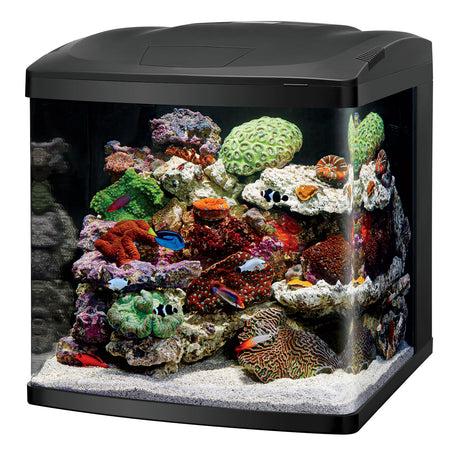 "Coralife LED BioCube 32 Aquarium Kit 20.25"" x 21.875"" x 21.5"" - ViTaiLity Pet Supply"