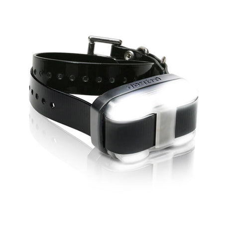 Dogtra EDGE 1 Mile Extra Dog Collar Black - ViTaiLity Pet Supply