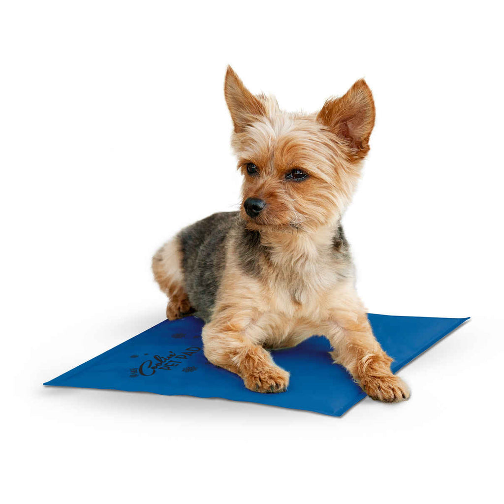 "K&H Pet Products Coolin Pet Pad Small Blue 11"" x 15"" x 0.75"" - ViTaiLity Pet Supply"