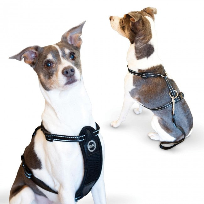 K&H Pet Products Travel Safety Pet Harness Extra Large Black - ViTaiLity Pet Supply