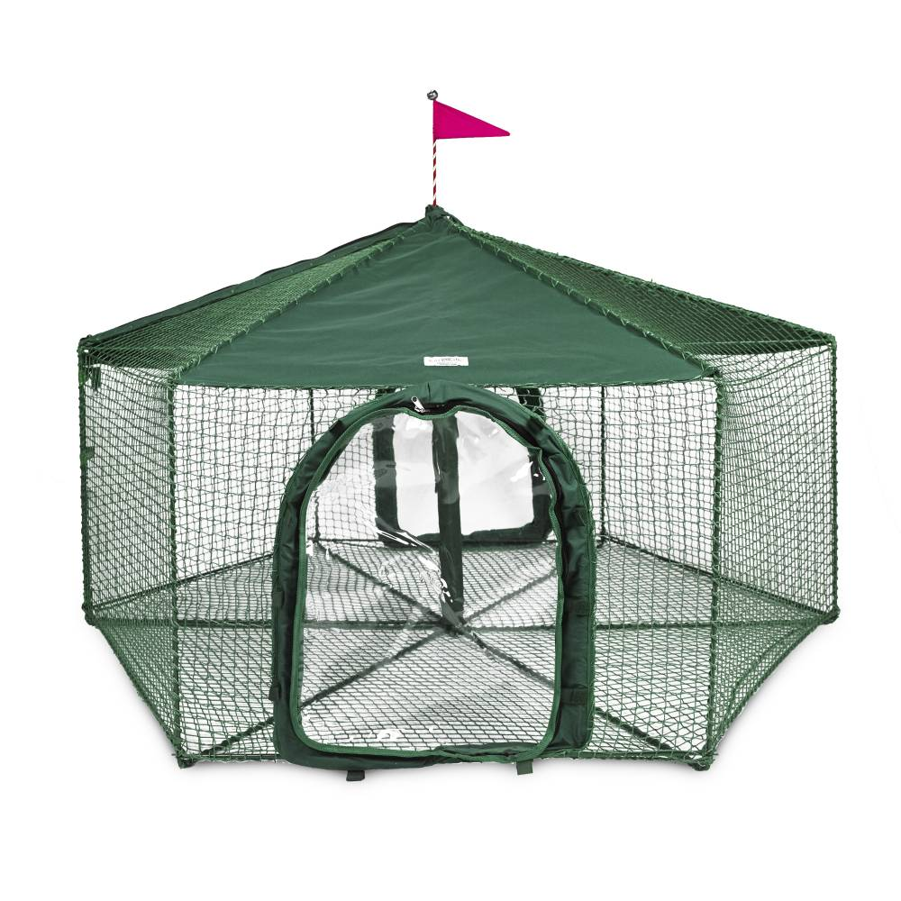 "Kittywalk Gazebo Yard and Garden Outdoor Cat Enclosure Green 70"" x 70"" 38"" - ViTaiLity Pet Supply"
