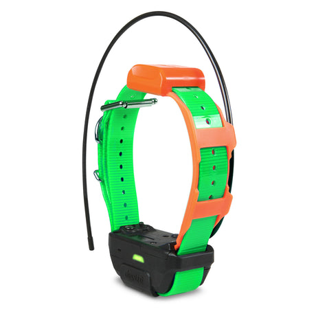 Dogtra Pathfinder TRX Tracking Only Collar Green - ViTaiLity Pet Supply