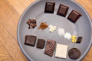 Dandelion Chocolate Experience 102: Ingredients