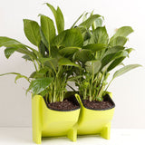 Planter Flower Pot Wall Hanging Garden