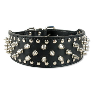 Black Adjustable Spiked Dog Collar & Harness