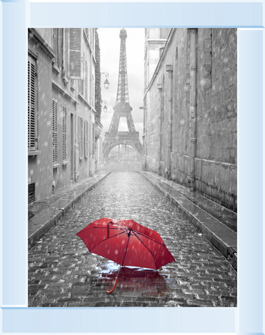 Parisienne Street Red Umbrella Picture by Final Touches