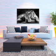 "Skulpta Canvas Print 30x45cm / 12x18"" / Rolled Canvas ・""Proud Tiger""・"