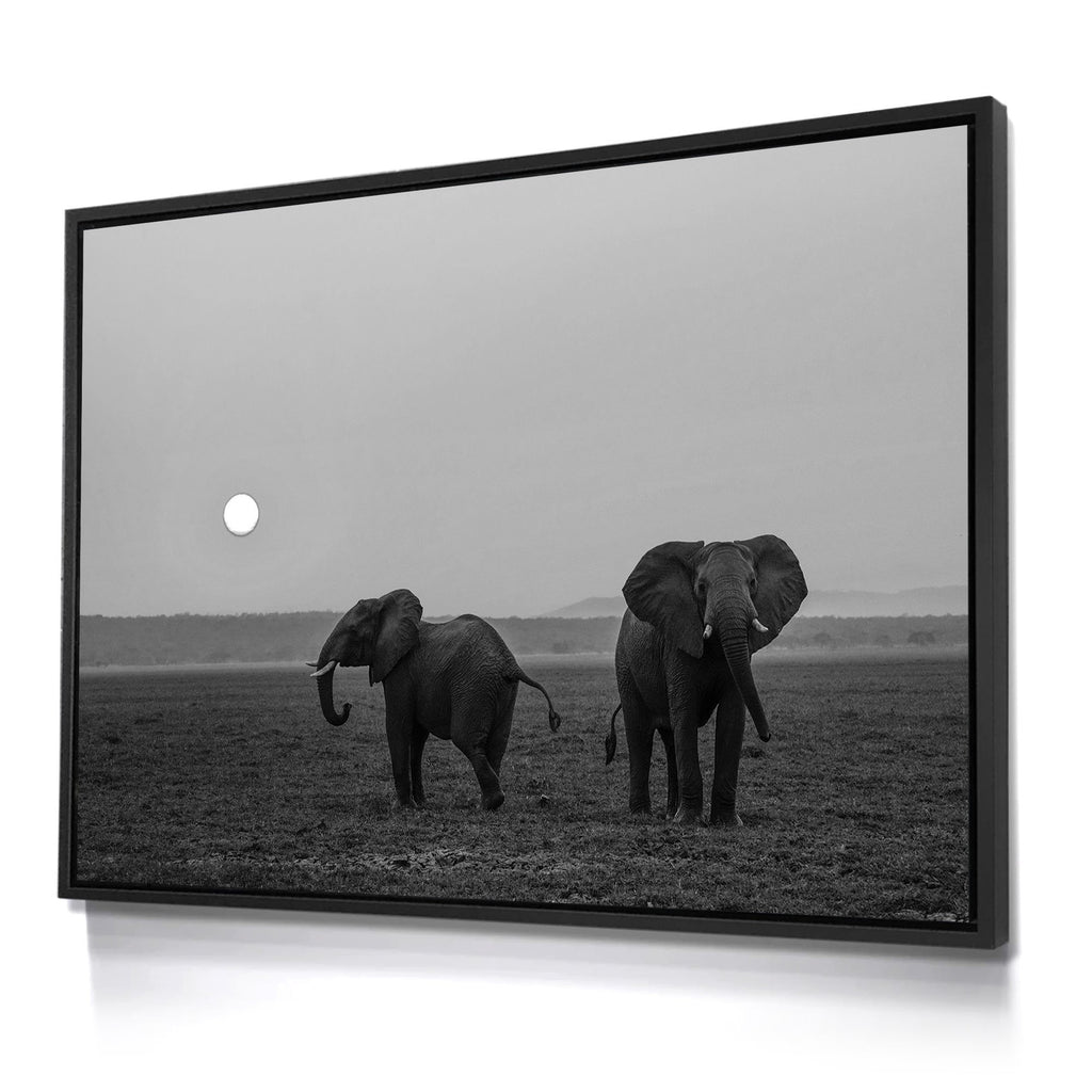 Skulpta Photography Fine Art Framed bw_25