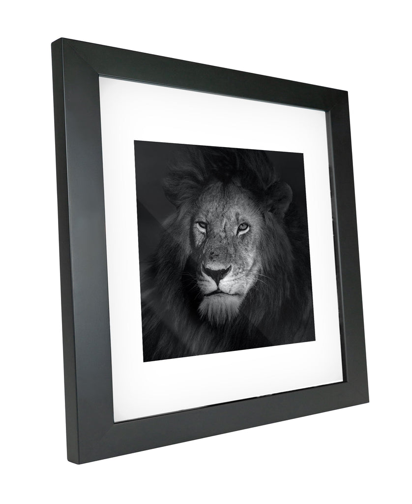 Skulpta Photography Fine Art Framed bw_6