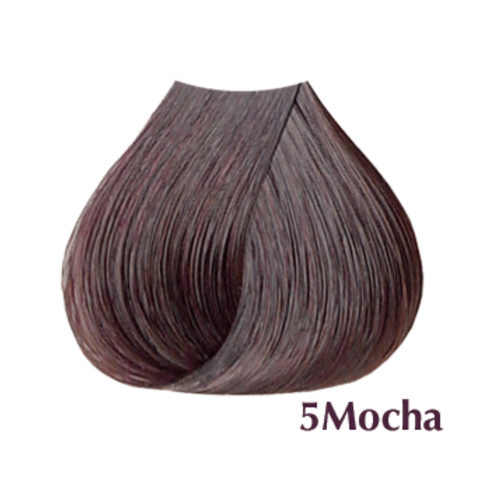 Satin Hair Color Mocha Series