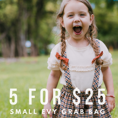 5 for $25 Blind Grab Bag of Small Evy Bows