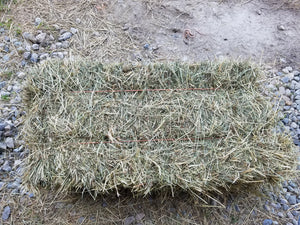 Organic 1st Cut Small Square Bale