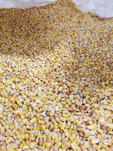 Organic Corn Food Grade Delivered