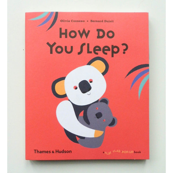 How Do You Sleep? by Olivia Cosneau and Bernard Duisit