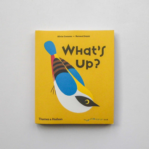 What's Up? by Olivia Cosneau and Bernard Dusuit