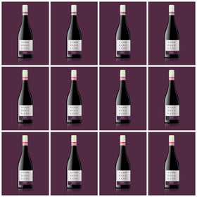 2019 Colour Series Shiraz 12 bottle case