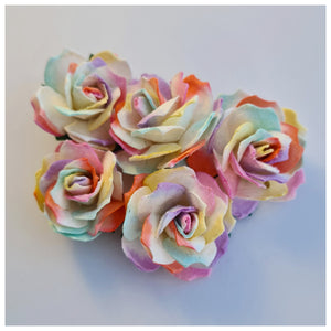 30mm Rainbow Mulberry Paper Wild Roses