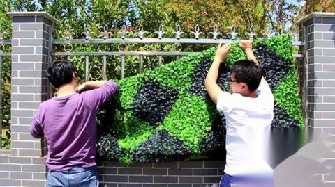 artificial green wall plants